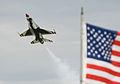 Thunderbird and flag.jpg