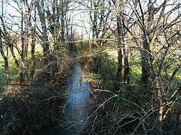 Le Trincou, une vingtaine de mètres avant sa confluence avec la Côle.