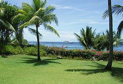 Tropical-area-mactan-philippines.jpg