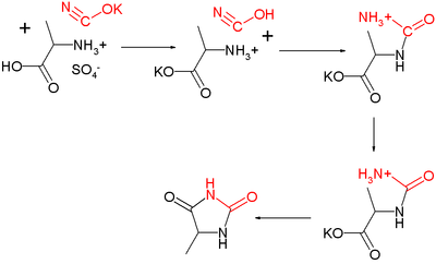 Urech Hydantoin synthesis