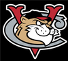 ValleyCats.PNG