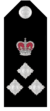 Vic-police-commander.png