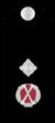Vic-police-deputy-commissioner.png