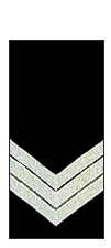 Vic-police-sergeant.png