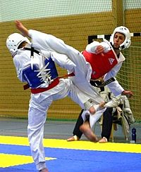 WTF Taekwondo 1.jpg