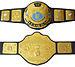 WWF Undisputed Championship.jpg