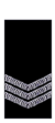 Wa-police-sergeant.png