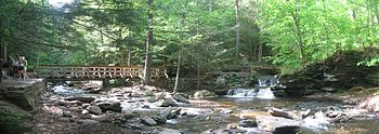 Photo of two creeks in rocky beds that meet, surrounded by sunlit forest and rocky outcrops. There are hikers at far left, a wooden footbridge crossing the stream at left, and a small waterfalls at far right.