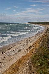 Shoreline with narrow rocky beach and then scrub vegetation