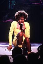 Whitney Houston Welcome Heroes 8.JPEG