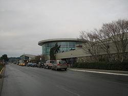 YYJ-Terminal.jpg