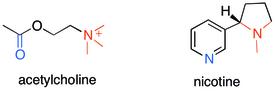 Acetylcholine-nicotine.tif