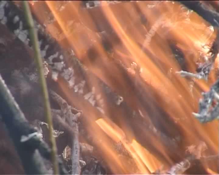 Feuer2007-10-16.ogg