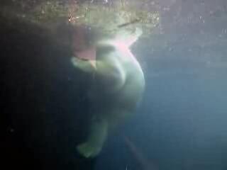 Polar Bear Underwater Zoo Bremerhaven Germany.ogv