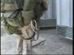 Second Battle of Fallujah, mosque firefight and house searches.ogv